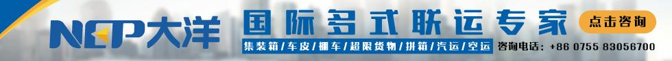 深圳市大洋物流有限公司