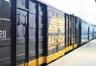国际铁路运输,批量零散快运业务